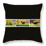 Deer In The Wild Throw Pillow
