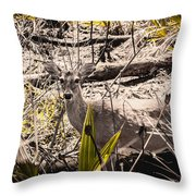 Deer In The Wood Throw Pillow