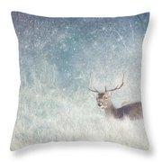 Deer In Winter Scene Throw Pillow