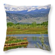 Deer Island Throw Pillow
