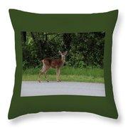 Deer On Road Throw Pillow
