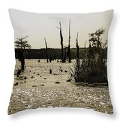 Deer Point Lake At Dusk Throw Pillow
