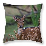 Deer V5 Throw Pillow