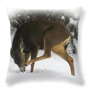 Deer With An Itch Throw Pillow