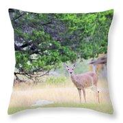 Deer21 Throw Pillow