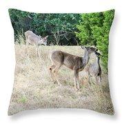 Deer24 Throw Pillow
