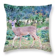 Deer42 Throw Pillow