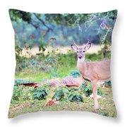 Deer50 Throw Pillow
