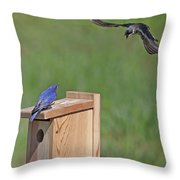 Defending The Nest Throw Pillow