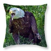 Defiance Throw Pillow
