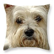 Definition Of Cute Throw Pillow