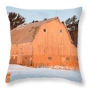 Defunct Winter Throw Pillow