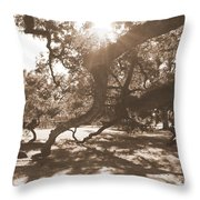 Defying Gravity In Sepia Throw Pillow