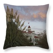 Del Coronado Brushes Throw Pillow