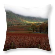 Del Rio Vineyard Throw Pillow