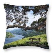 Del Valle Reservoir Throw Pillow