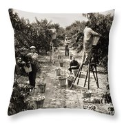 Delaware: Peach Orchard Throw Pillow
