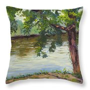 Delaware River At Washington's Crossing Throw Pillow