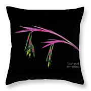 Delicate And Colorful Throw Pillow