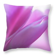 Delicate Beauty Of Cyclamen Flower Throw Pillow