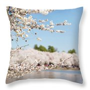 Delicate Blossoms Over The Tidal Basin Throw Pillow
