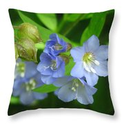 Delicate Blues Throw Pillow