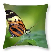 Delicate Butterfly Throw Pillow