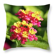 Delicate Cluster Throw Pillow