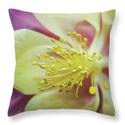 Delicate Columbine Nature Photograph Throw Pillow