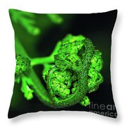 Delicate Fern Unfolding Throw Pillow