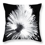 Delicate Fleabane Daisy Throw Pillow