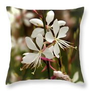 Delicate Gaura Flowers Throw Pillow