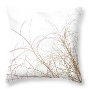 Delicate January Tree Branches Throw Pillow