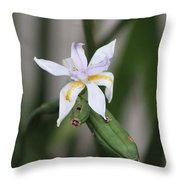 Delicate Pale Purple Iris Throw Pillow