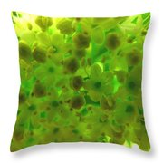 Delicate Picture As A Pattern For Fabric Throw Pillow