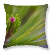 Delicate Pine Throw Pillow