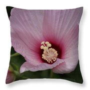 Delicate Pink Hibiscus Throw Pillow