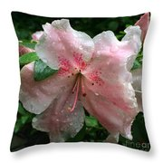 Delicate Pinks In Rain - Flower Photography Throw Pillow