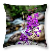 Delicate Purple Throw Pillow