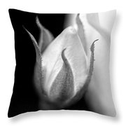 Delicate Rose Bud Black And White  Throw Pillow