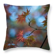 Delicate Signs Of Autumn Throw Pillow