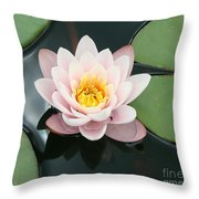 Delicate Waterlily Throw Pillow