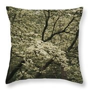 Delicate White Dogwood Blossoms Cover Throw Pillow