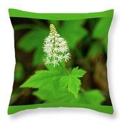 Delicate Wildflower Georgia Mountains Throw Pillow