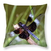 Delicate Wings Of A Dragonfly Throw Pillow