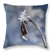 Delicate Winter Throw Pillow