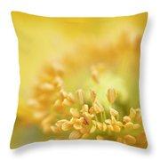 Delicate Yellow Poppy Throw Pillow