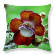 Delicately Veined ... With Tentacles Throw Pillow