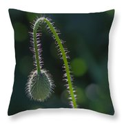 Delicately Waiting Throw Pillow