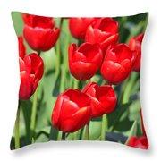 Delicious Tulips Throw Pillow